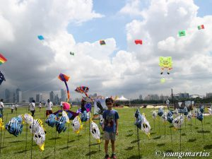 Let's fly kite @ Singapore Kite Day 2016