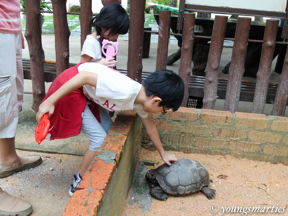 Unschooling: Road Trip to Gopeng (Part 3)