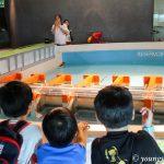 Discovering Singapore: Marina Barrage (Part 2)