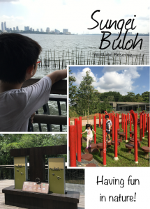 Nature Exploration at Sungei Buloh Wetland Reserve