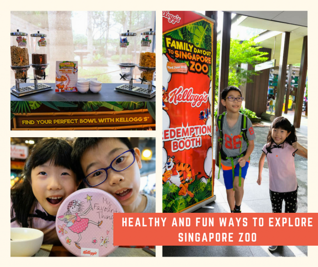 Healthy and fun ways to explore Singapore Zoo