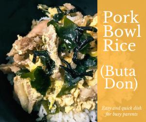 Pork Bowl Rice (Buta Don)