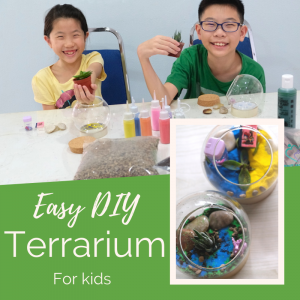Easy DIY terrarium for kids